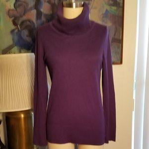 Purple Soft Caslon Turtleneck Sweater